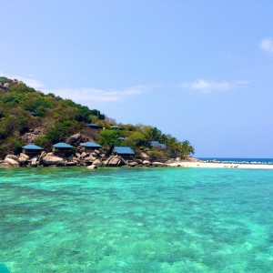 Why You Should be Scuba Diving Koh Tao, Thailand